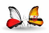 Two Butterflies With Flags On Wings As Symbol Of Relations Poland And Brunei