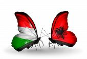 Two Butterflies With Flags On Wings As Symbol Of Relations Hungary And Albania