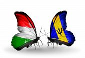 Two Butterflies With Flags On Wings As Symbol Of Relations Hungary And Barbados
