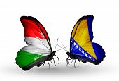 Two Butterflies With Flags On Wings As Symbol Of Relations Hungary And Bosnia And Herzegovina