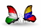 Two Butterflies With Flags On Wings As Symbol Of Relations Hungary And Venezuela