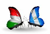 Two Butterflies With Flags On Wings As Symbol Of Relations Hungary And Guatemala