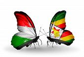 Two Butterflies With Flags On Wings As Symbol Of Relations Hungary And Zimbabwe