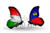 Two Butterflies With Flags On Wings As Symbol Of Relations Hungary And Liechtenstein