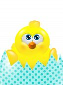 Easter Chick In Egg Looking Up Isolated Over White