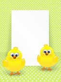 Easter Chicks And White Blank Over Dotted Background