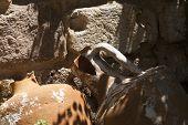 Amphora On Bodrum Castle