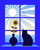 Sea And Sun Outside Window