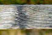 vintage old wood texture