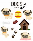 stock photo of pug  - a vector of a pug that - JPG