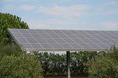 Photovoltaic 1