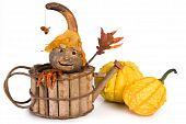 Pumpkin Puppet