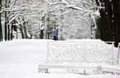 Tsarskoye Selo (Pushkin), Saint-Petersburg, Russia. The Catherine Park. Empty bench