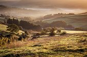 Diggle Valley