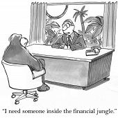 Financial Jungle
