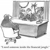Financial Jungle