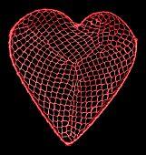 Heart net