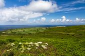 Cornish coast between Lands End and St. Ives, Cornwall, England