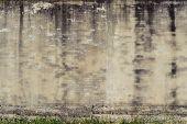 Old Brick Wall And Weeds