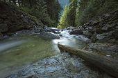 Murdo Creek