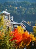 Fall in Whistler