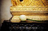 Lotus bud in temple. Bangkok, Thailand