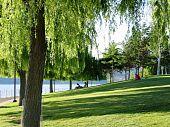 seaside park in summertime