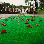 Wedding ceremony in a beautiful garden.