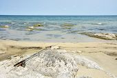 Family's Fishing Rods on the Rocks next to Lake Malawi, Africa