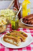 picture of condiment  - Grilled hot dogs on a paper plate sitting on a table with potato salad chips and condiments - JPG