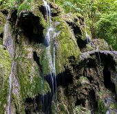 foto of backwoods  - Waterfall Landscape in the Mountains - JPG