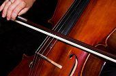 Feminine Hands Playing Cello