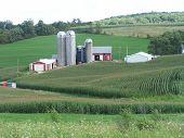 Edificios de la granja