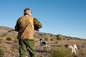 stock photo of early 50s  - Hunter and dogs watching out for the prey - JPG