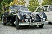 Black Jaguar Xk120 Classic