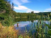 Still Pond In Late Summer