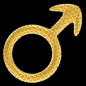 Golden Male Gender Symbol Isolated