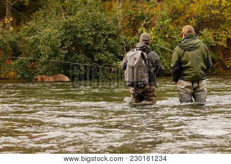 People And Bears Fishing Together