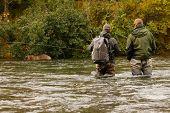 People And Bears Fishing Together In Brooks River In Katmai National Park In Alaska, Fishermen Break poster