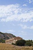 sicilia - coast to coast -  segesta