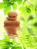 Zen Or Spa