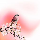 Red spring background with blossoming tree and small bird