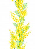 Seamless vertical spring mimosa pattern