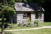 Old Historic Log Cabin poster