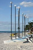 Veleros Hobie Cat en una playa Tropical
