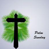Illustration Of Cross On Palm Leaves Background With Palm Sunday Text On The Occasion Of Christian M poster