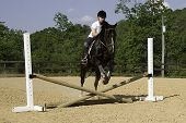 Girl Jumping With Horse