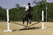 stock photo of horse riding  - Pre - JPG