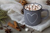 Winter And Autumn Hot Drinks. Winter Decoration. Grey Cup Of Hot Cocoa Or Chocolate With Marshmallow poster