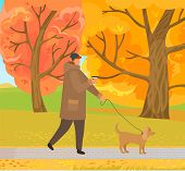Autumn Park With Path And Dried Leaves On Trees Vector. Man Walking Pet On Leash, Male Wearing Warm  poster